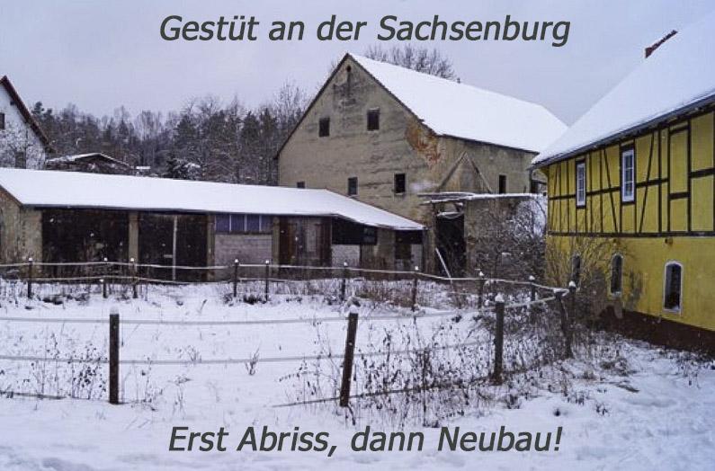 Gestüt an der Sachsenburg